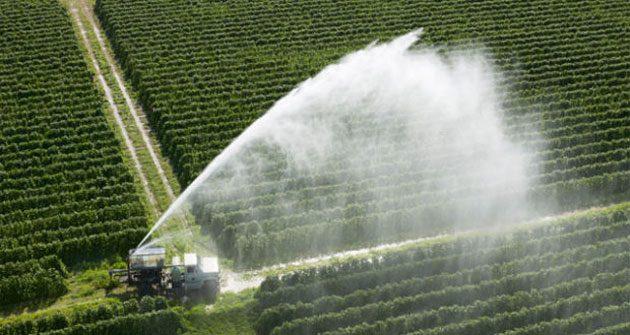 00  Prácticas agrícolas sustentables: temen crisis  00