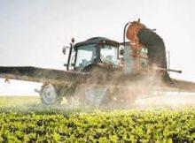 Agricultores: enfermedad renal crónica que desconcierta 0