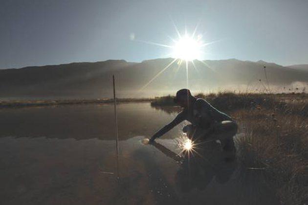 Ecosistemas: 5ta. parte del mundo corre riesgo de colapsar