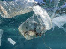 Fondo del océano: millones de toneladas de microplásticos 0