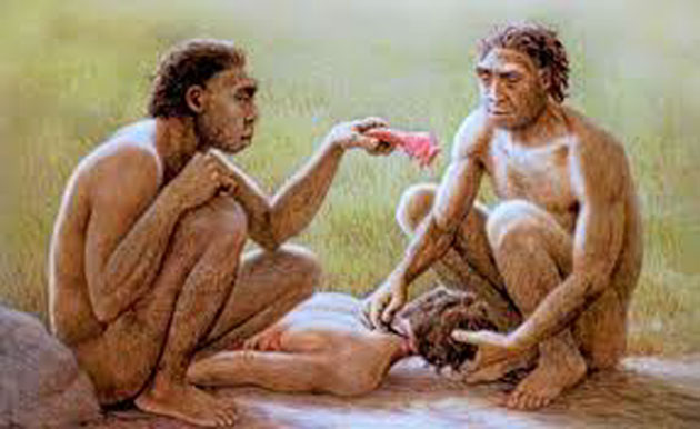 Canibalismo: práctica sorprendentemente común en el mundo 0