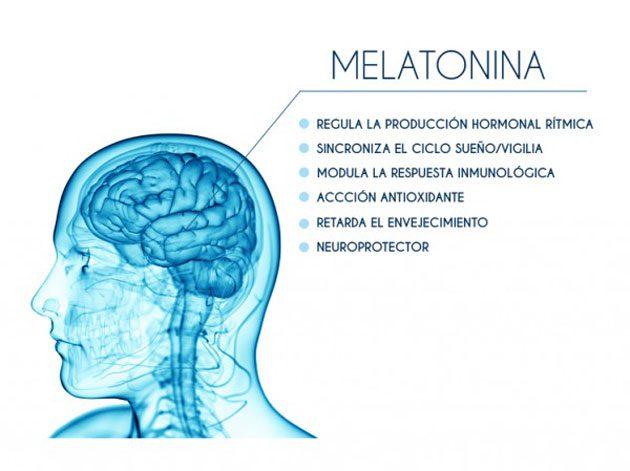 00  Melatonina: La glándula pineal secreta hormonas  00