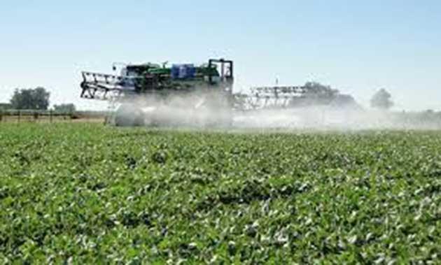 Herbicidas: puede dañar, al 90% de las especies en extinción