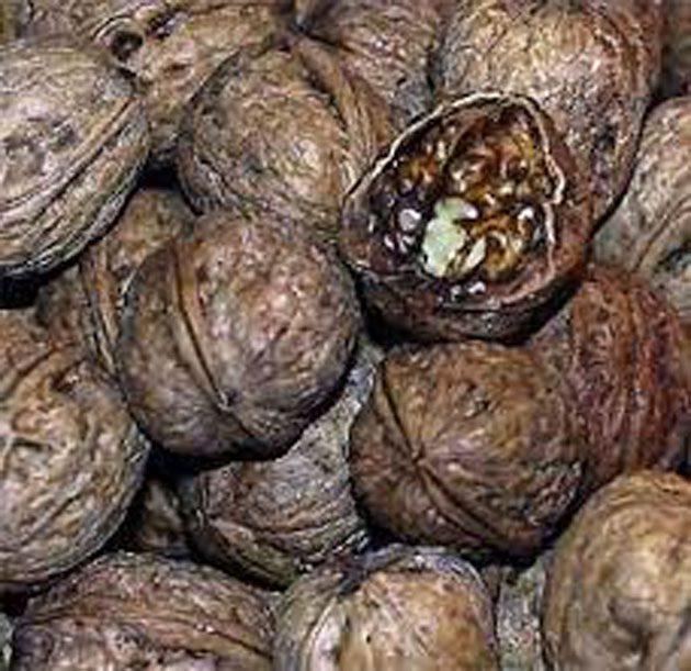 00 Nuez y chokeberry: evaluaron efectos antioxidantes 00