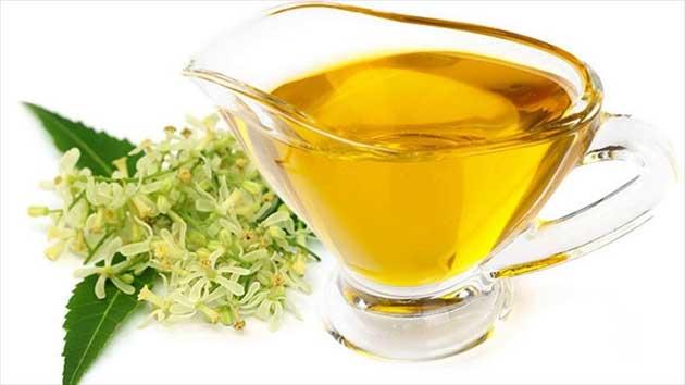 00  Neem: el aceite de neem es rico en antioxidantes 00