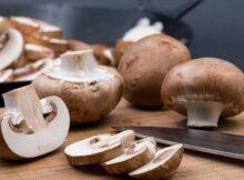 00 El hongo comestible reduce el riesgo de cáncer 00