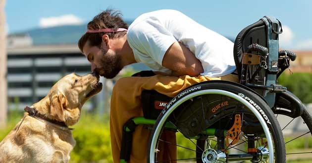 00  Animales de apoyo para personas con discapacidad  00