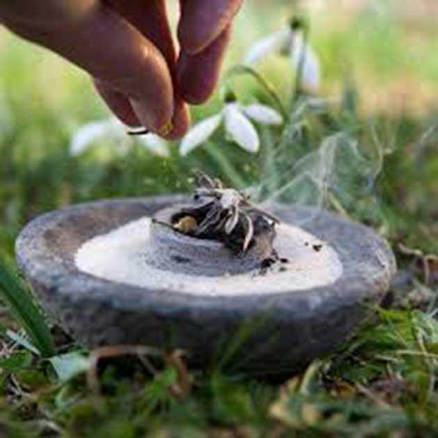 00 Repelentes de insectos totalmente naturales 00