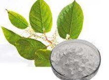 00 Resveratrol: reduce los efectos nocivos del nitrito 00