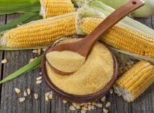 00 El maíz: cómo preparar este alimento de supervivencia 00
