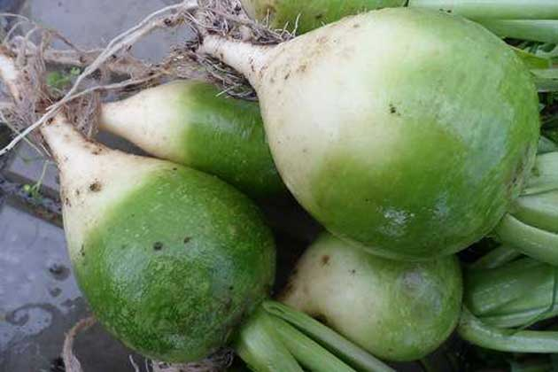 00 Conservar frutas y verduras: almacenamiento 00